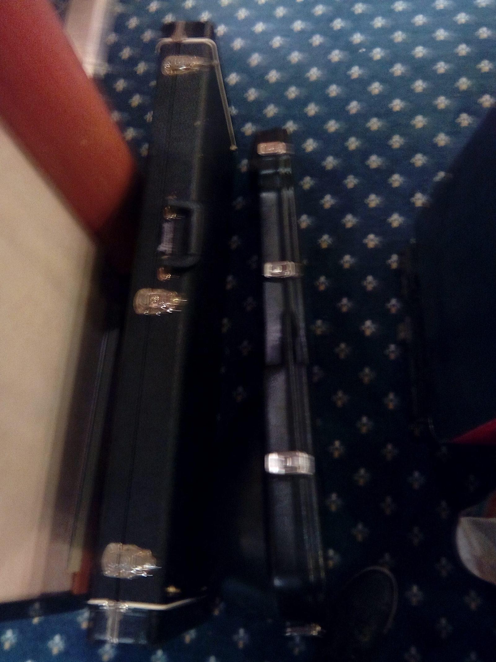 Skonnie Music, Guitar cases, Tour, World Travel, Connie Yerbic